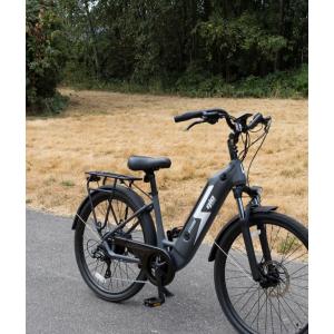 Gio storm e-bike